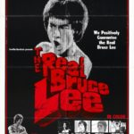 Fists of Bruce Lee Fury